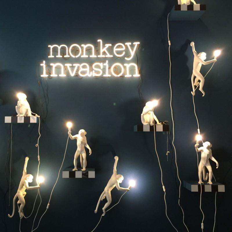 applique singe