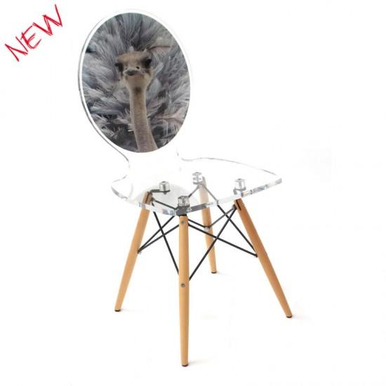 chaise graph autruche marque acrila chaise design made in france. Black Bedroom Furniture Sets. Home Design Ideas