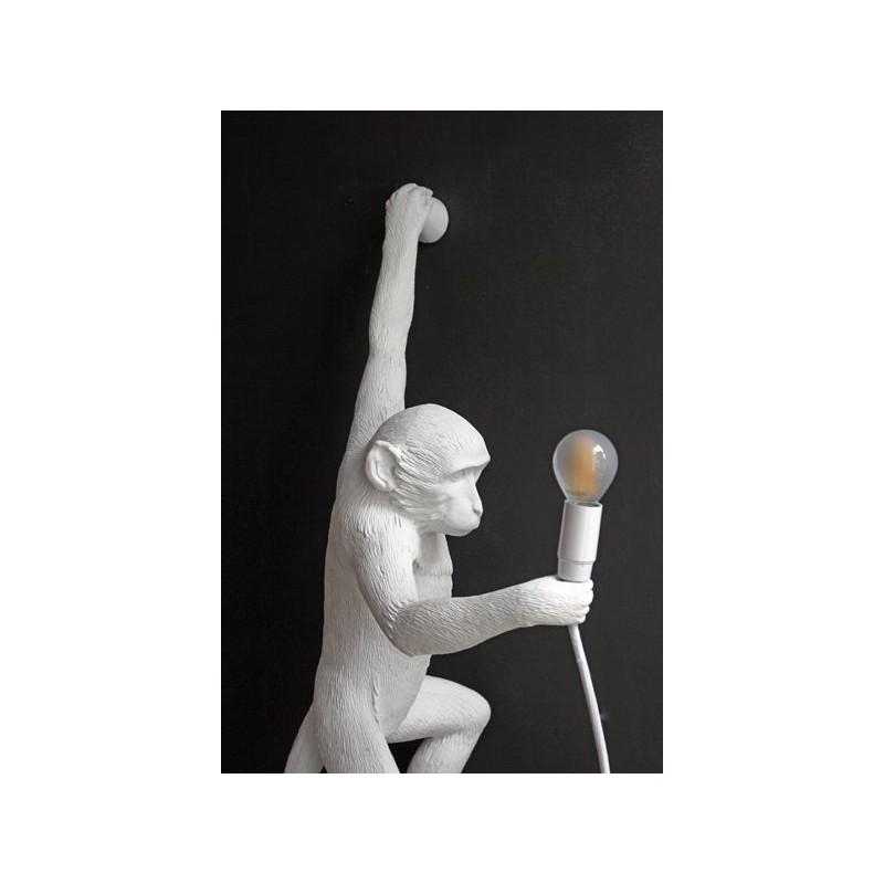 applique monkey monkey lampe lampe singe applique singe seletti. Black Bedroom Furniture Sets. Home Design Ideas